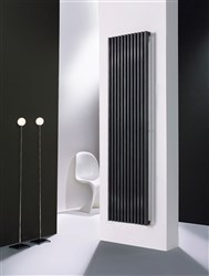 Vasco Zana Vertical Radiator