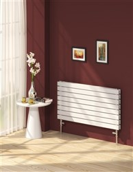 Reina Rione Double Radiator