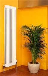 Apollo Roma 2 Column Vertical Radiator